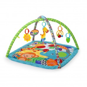 Zippy Zoo Activity Gym.