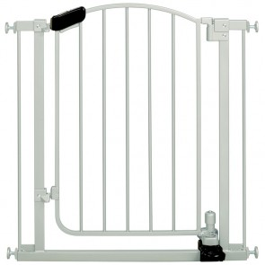 Stylish & Secure Step to Open Gate